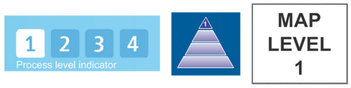 a pale blue box with 1,2,3,4 written in white and process level indicator below, a blue bow with a pyramid coloured in 1 and white bow with map level 1